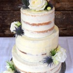 seminaked naked cake